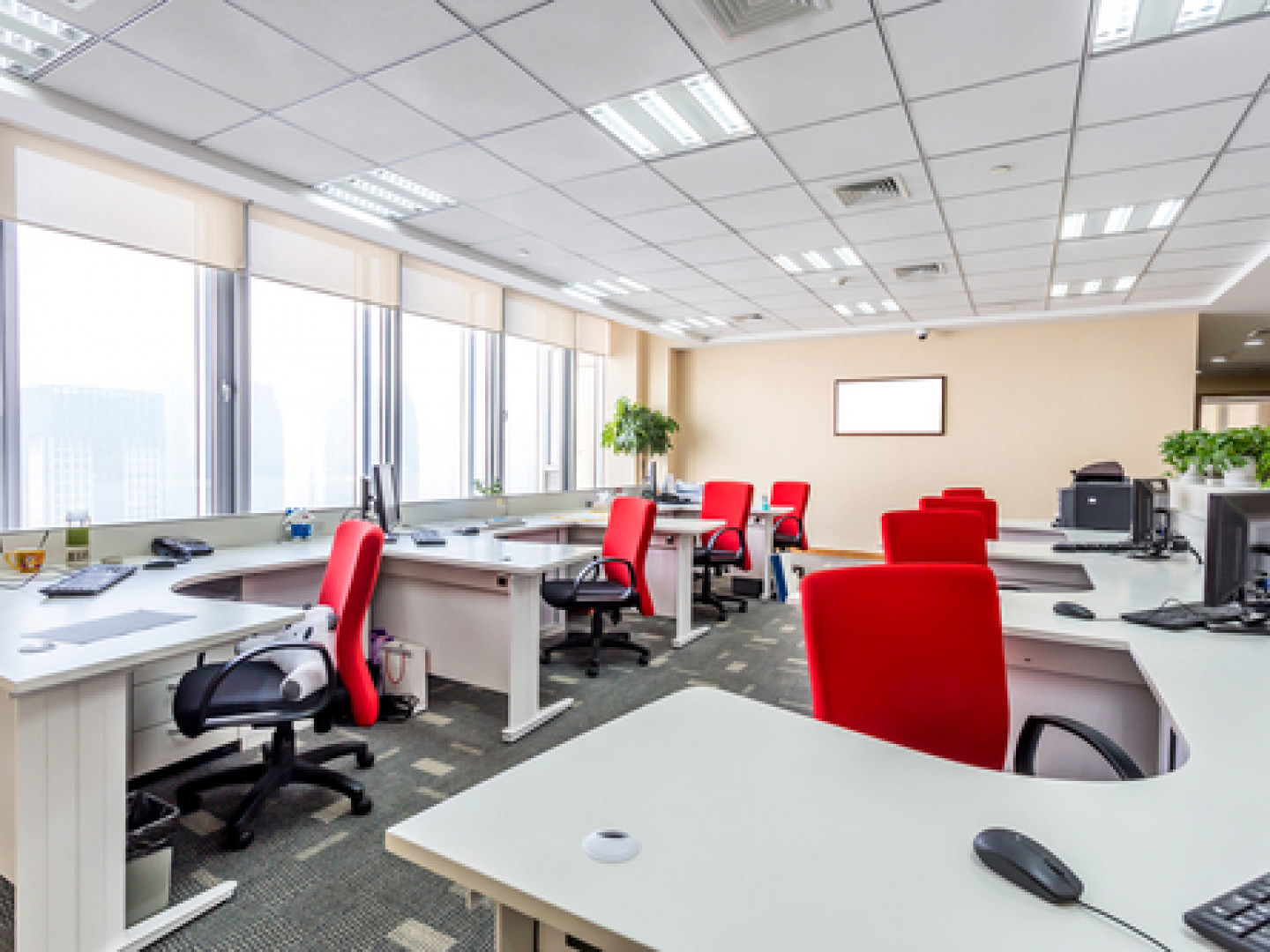 Our highly reliable, customer-focused team will customize our office cleaning services to fit your needs